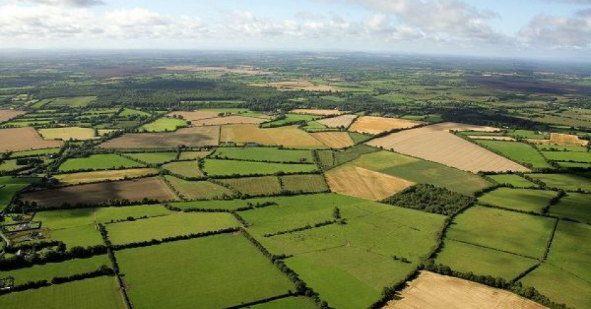 اراضی کشاورزی