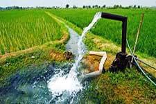 یکشنبه-دوم آبان 1400-هم اندیشی شبکه ملی نخبگان بکوجا برای مدیریت مصرف آب در شالیزار