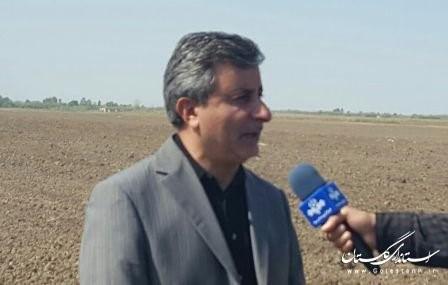 همکار افتخاری بکوجا- مهندس علیرضا مهاجر